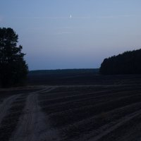 Луна над сгоревшим полем :: G Nagaeva