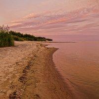 Розовый берег :: Владимир Самсонов