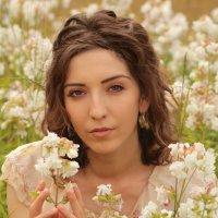 Нежный цветок :: Катрина Деревеницкая