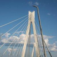 Муромский мост на Оке :: Иван Щербина