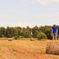 В поле :: Реш