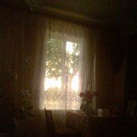 Удивительно странный цвет неба... :: Valeriya Voice