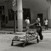 Продавец фруктов :: Марина Кузнецова