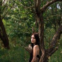 В лесу :: Ната Анохина