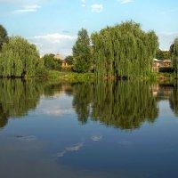 Летний день отразился в реке :: Лидия Цапко