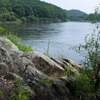 река Уссури :: Mikhail