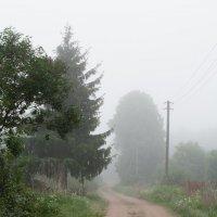Утро туманное :: Александр Знаменский