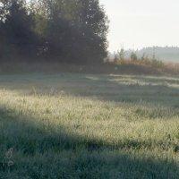 Рассвет в полях :: Юрий Цыплятников