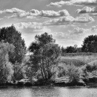 лето :: павел бритшев