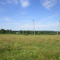 Опьянели столбы от  летнего зноя и аромата трав. :: Мила Бовкун