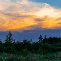 Закат над лесом 7 августа 2014. :: Анатолий Клепешнёв
