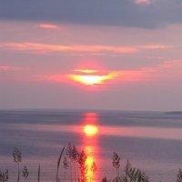 Закат на море :: Самохвалова Зинаида