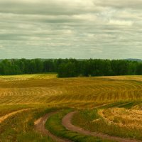Послеуборочное поле :: Андрей Еремеев