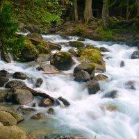 Горная река :: Тимур