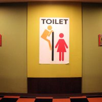 Таиланд. Корат. Туалет в музее :: Владимир Шибинский