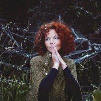 В лесу :: Ольга Чиж
