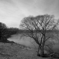 Черно-белый пейзаж :: Igor Khmelev