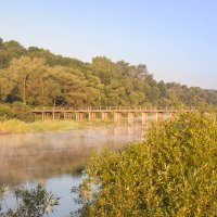 Мост через Десну :: Елена Миронова