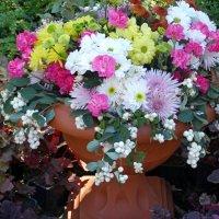 Цветы в вазоне :: Raisa Ivanova