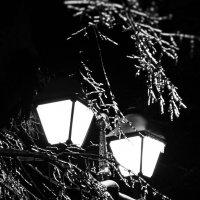 Свет и лед :: Матвей Акимов