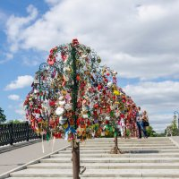 Дерево :: Елена Зинякова