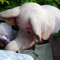 До слоников :: Виктор Х.