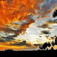 Рыжее небо :: Валентина Пирогова