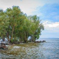 Кременчугское водохранилище :: Svetlana Shumilova