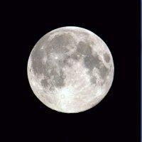 Луна в августе :: Юрий Савинский