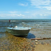 Чтобы рыбку съесть, надо в воду лезть. :: Наталья Покацкая