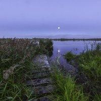 Вечер на озере :: Эдуард Пиолий