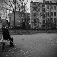 осень года - осень жизни :: Natalia Mihailova