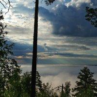 Утро.Озеро в тумане. :: Владимир Михайлович Дадочкин