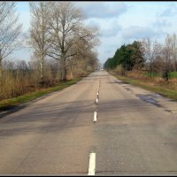 Куда-то в даль ведёт   весеняя дорога. :: Валентина ツ ღ✿ღ
