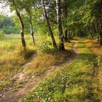 Один день августа - IMG_3874 :: Андрей Лукьянов