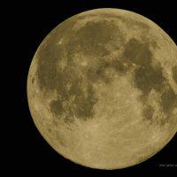 Луна :: Алтай И.