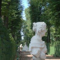 Летний сад :: Stasya Cherepanova