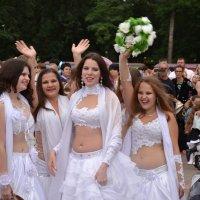 Наши невесты :: Владимир Болдырев