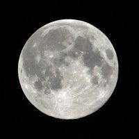 Luna arbuz :: Rena Vi
