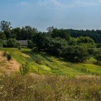 Домик в деревне :: Игорь Кизюн