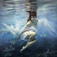 Another world. :: Дмитрий Лаудин