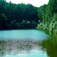 Лесное озеро :: Валерий Баранчиков