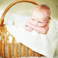 малыш :: Ирина Каткова