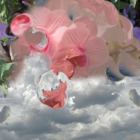 Где-то там,в облаках... :: Наталья