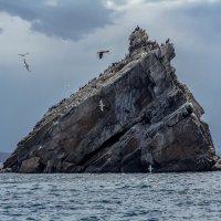 Байкал :: Константин Долгий