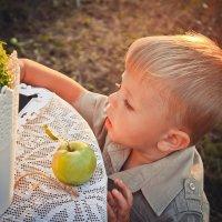 Яблоневый сад :: Алена Тараненко