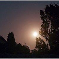 Ночной пейзаж с суперлунием :: Кай-8 (Ярослав) Забелин
