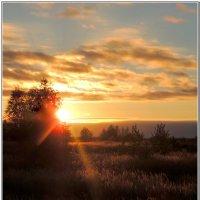 Уходящее солнце :: Николай Дементьев