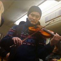 Скрипка :: Igor Khmelev