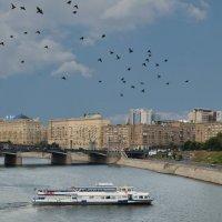 И плывут, и летят, и едут... :: Ирина Шарапова